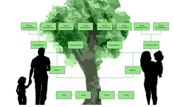 Working on a family tree will help avoid a nursing home