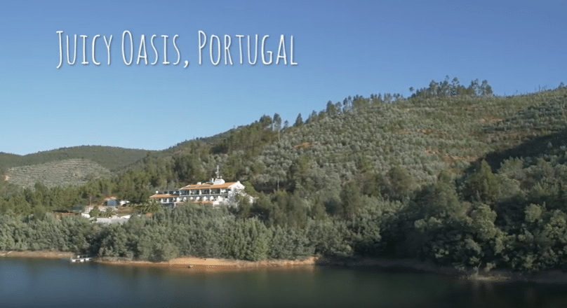The retreat in Portugal for the 28-Day Juicing Challenge